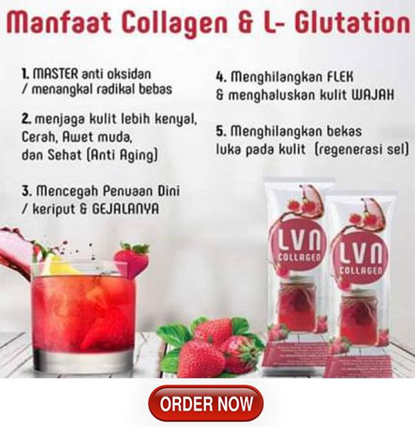 lvn minuman collagen yang aman untuk ibu menyusui