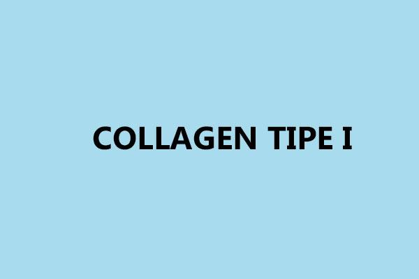 minuman collagen paling bagus